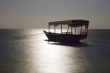 A boat in moonlight on Paje Beach, Paje, Zanzibar, Tanzania, East Africa, Africa