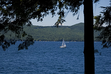 A sailboat on Lake George viewed through pine trees, Adirondack Mountains, New York State, United States of America, North America