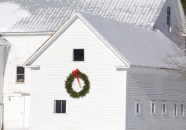 A white painted barn with a large Christmas wreath on the side, Vermont, New England, United States of America, North America