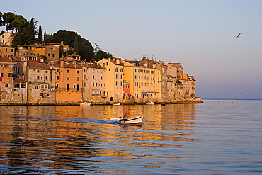 A small fishing boat at Rovinj at sunrise, Istria, Croatia, Adriatic, Europe