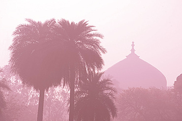 The dome of a temple in early morning mist in Delhi, India, Asia