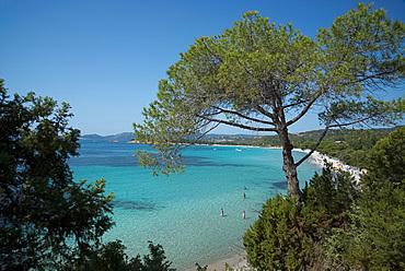 An elevated view of Palombaggia Beach near Porto-Vecchio, Corsica, France, Mediterranean, Europe