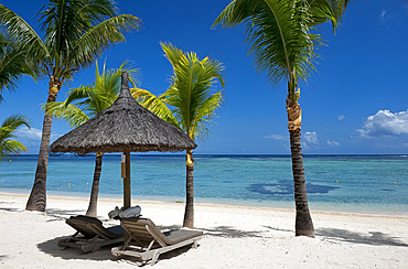Palm trees and a white sand beach at the Lux Le Morne Hotel on Le Morne Brabant Peninsula, Mauritius, Indian Ocean, Africa