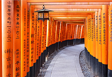 Red Gates at the Fushimi Inari Taisha, a Shinto shrine on Mount Inari, Kyoto, Arashiyama, Japan, Asia