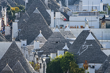 Conical dry stone roofs on trulli, traditonal houses in Alberobello, UNESCO World Heritage Site, Bari Province, Puglia, Italy, Europe
