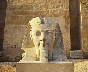 Statue of a Colossi at the Entrance to Luxor Temple in Egypt
