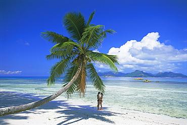 Anse Severe beach, La Digue Island, Seychelles, Indian Ocean, Africa