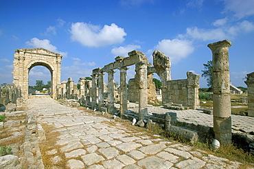 Roman triumphal arch and colonnaded street, Al Bas site, UNESCO World Heritage Site, Tyre (Sour), Lebanon, Middle East