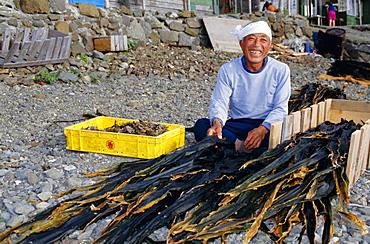 Seaweed farmer, Rebun Island, Hokkaido, Japan, Asia