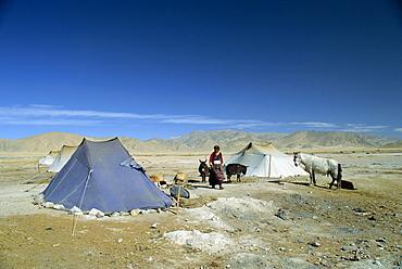 Tibetan nomads camp near Tingri in Tibet, China, Asia