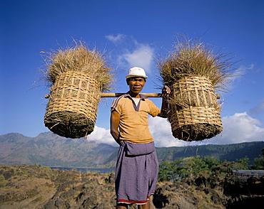 Farmer carrying baskets, Bali, Indonesia, Southeast Asia, Asia