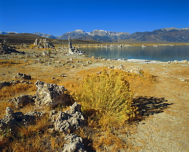 Tufas (calcium carbonate), Mono Lake, Tufa State Reserve, California, USA, North America
