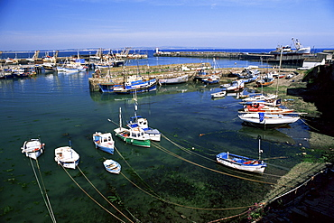 Harbour and fishing fleet, Penzance, Cornwall, England, United Kingdom, Europe