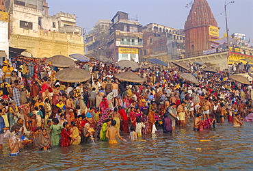 Hindu religious morning rituals in the Ganges (Ganga) River, Makar Sankranti festival, Varanasi (Benares), Uttar Pradesh State, India - 252-4588