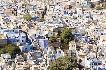 Jodhpur, Blue City (Navchokiya), Rajasthan, India, Asia