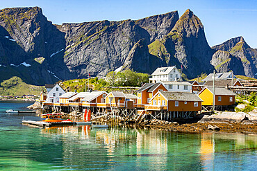 Fishing village on Reinefjorden, Saknesoya, Lofoten Islands, Norway, Scandinavia, Europe