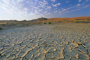 Sunbaked mud pan, cracked earth, near Sossuvelei, Namib Naukluft Park, Namibia, Africa