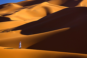Berber man walking among the orange sand dunes of the Erg Chebbi sand sea, Sahara Desert near Merzouga, Morocco, North Africa, Africa
