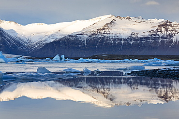View over Jokulsarlon glacial lagoon towards snow-capped mountains and icebergs, with reflections in the calm water of the lagoon, at the head of the Breidamerkurjokull Glacier on the edge of the Vatnajokull National Park, South Iceland, Iceland, Polar Regions