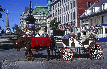 Horse carriage, Old Montreal, Quebec, Canada *** Local Caption ***