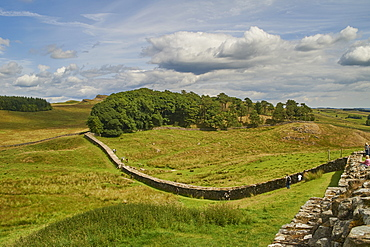 A section of Hadrian's Wall at Housesteads Fort, Bardon Mill, UNESCO World Heritage Site, Northumberland, England, United Kingdom, Europe
