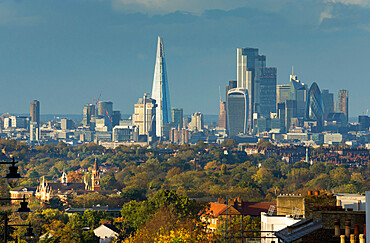London cityscape from Crystal Palace