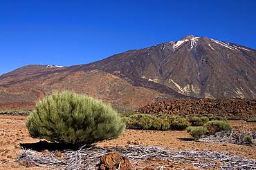 Mount Teide (Pico del Teide) from the south east outside Parador, Parque Nacional de Las Canadas del Teide (Teide National Park), Tenerife, Canary Islands, Spain, Europe