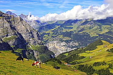 View from Kleine Scheidegg to Murren and Lauterbrunnen Valley, Grindelwald, Bernese Oberland, Switzerland, Europe