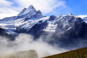 Schreckhorn, Grindelwald, Bernese Oberland, Canton of Bern, Switzerland, Europe