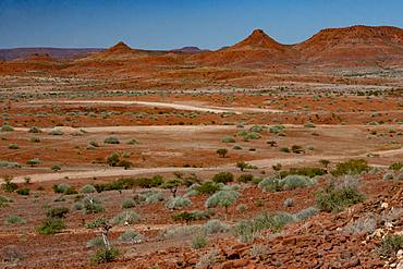Red rocky landscape punctuated by thorn trees and bushes, north of Palmwag, Namibia, Africa