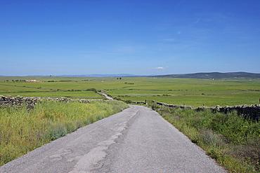 Belen Plains, near Trujillo, Extremadura, Spain, Europe