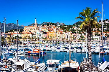 Old Town and Marina, Menton, Cote d'Azur, French Riviera, Provence, France, Mediterranean, Europe