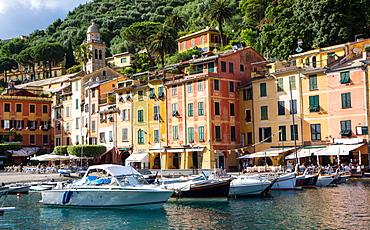 Marina, Portofino, Liguria, Italy, Europe