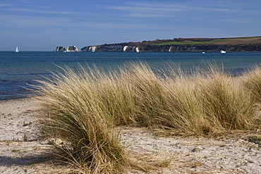 Studland Beach and The Foreland or Hardfast Point, showing Old Harry Rock, Isle of Purbeck, Dorset, England, United Kingdom, Europe