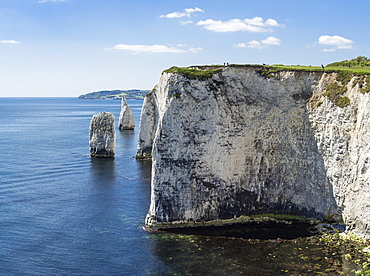 The Chalk cliffs of Ballard Down with The Pinnacles Stack and Stump in Swanage Bay, near Handfast Point, Isle of Purbeck, Jurassic Coast, UNESCO World Heritage Site, Dorset, England, United Kingdom, Europe