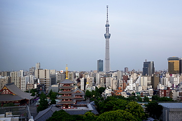 View over city with Tokyo Skytree and Five-Storied Pagoda, Tokyo, Japan, Asia