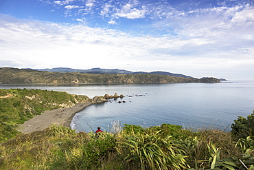 Oruaiti Reserve in Breaker Bay, Wellington, New Zealand, Oceania