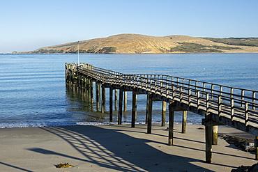 Omapere Wharf on the Hokianga, Omapere, Northland, North Island, New Zealand, Pacific