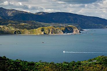 Wellington, North Island, New Zealand, Pacific