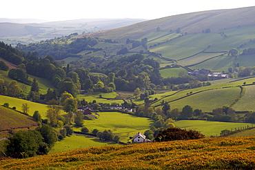 Landscape in Powys, Wales, United Kingdom, Europe