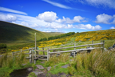 The footpath to Wistman's Wood on Dartmoor, Devon, England, United Kingdom, Europe