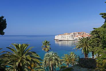 View of city across the sea and through palm trees, Dubrovnik, UNESCO World Heritage Site, Dalmatian Coast, Croatia, Europe