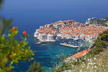 High view of city and harbour from mountain side, Dubrovnik, UNESCO World Heritage Site, Dalmatian Coast, Croatia, Europe