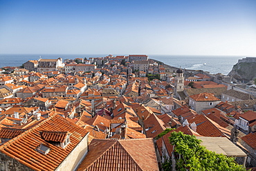 View across rooftops from the city wall of Dubrovnik, UNESCO World Heritage Site, Croatia, Europe