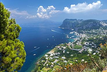 View over harbour towards mainland, Island of Capri, Italy, Mediterranean, Europe