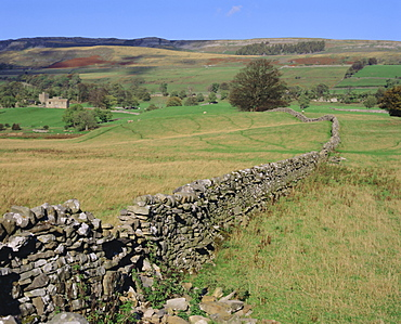 Wensleydale, Yorkshire Dales National Park, Yorkshire, England, UK, Europe