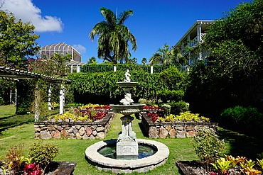 Nevis Botanical Garden, Nevis, St. Kitts and Nevis, Leeward Islands, West Indies, Caribbean, Central America