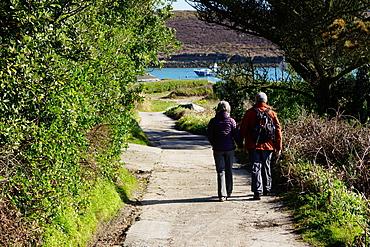 Bryher, Isles of Scilly, England, United Kingdom, Europe