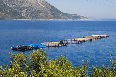 Fish farm for sea bass and sea bream near Vathy (Vathi), Ithaka, Ionian Islands, Greece, Europe