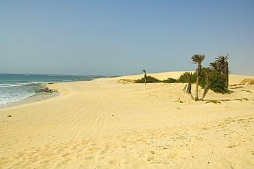 Praia de Chaves (Chaves Beach), Boa Vista, Cape Verde Islands, Atlantic, Africa